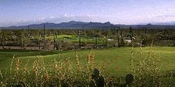 The Ritz-Carlton Golf Club, Dove Mountain