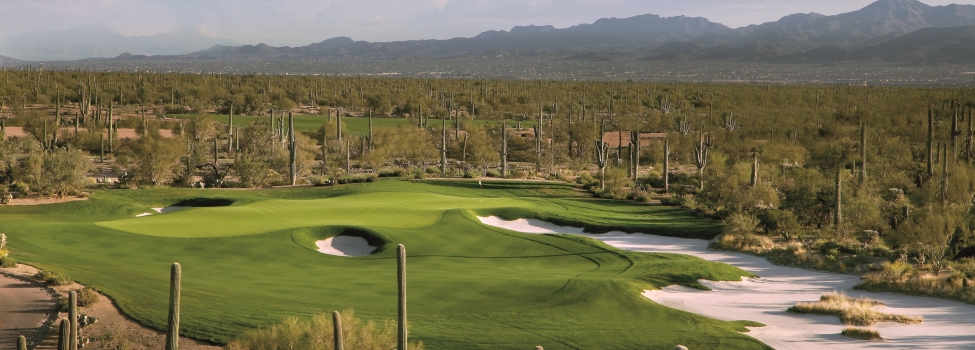 The Ritz-Carlton Golf Club, Dove Mountain