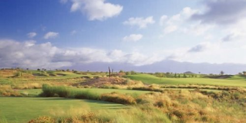Whirlwind Golf Club - Devils Claw